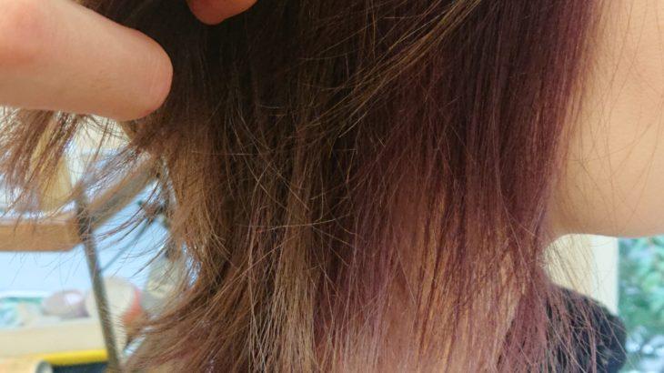 白髪染めのトーンアップとティントバーを使ったインナーカラー
